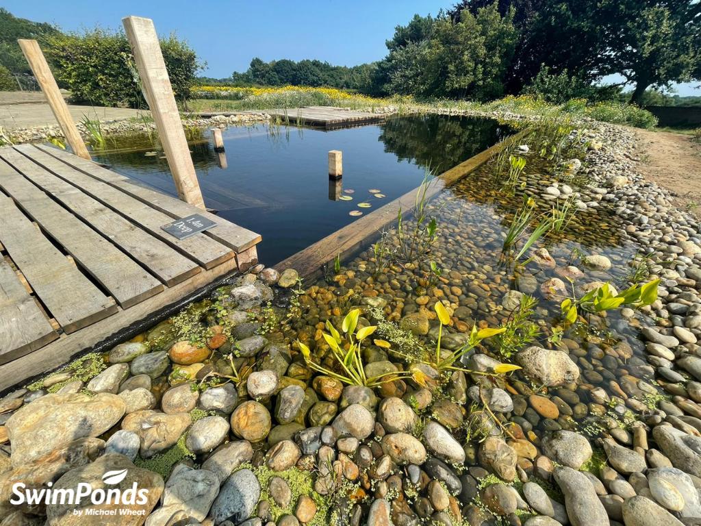 Swimpond - Suffolk
