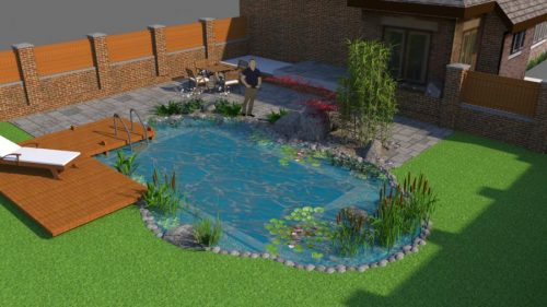 CAD 3D render of a natural swimming pond